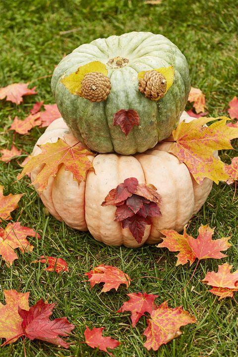 halloween diy decor ideas pumpkin gourd