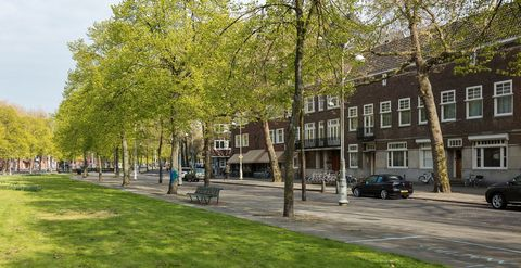 Property, Neighbourhood, Town, Tree, Public space, Building, Human settlement, Mixed-use, City, Architecture,