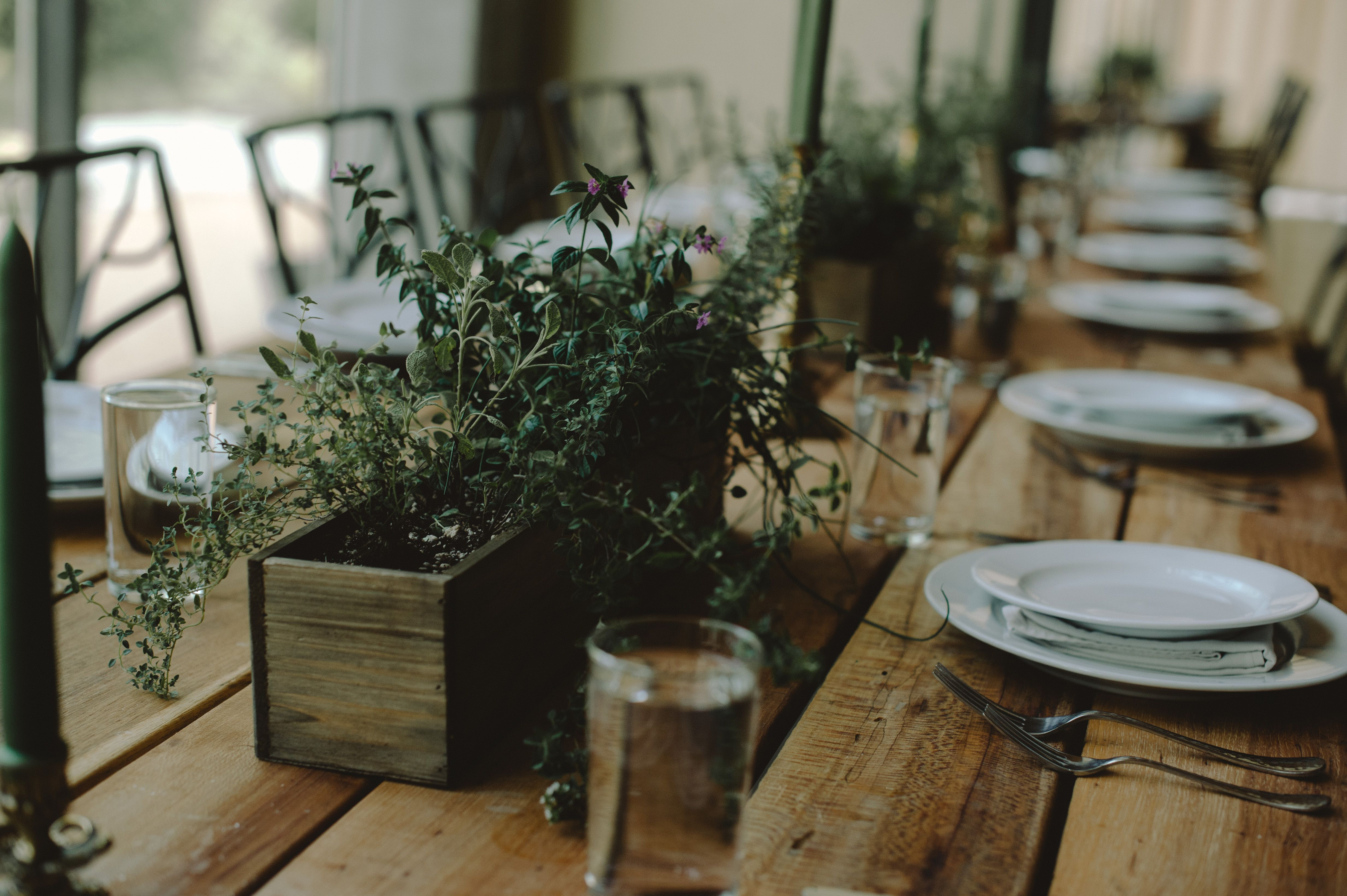 Best greenery wedding centerpieces green centerpieces for wedding