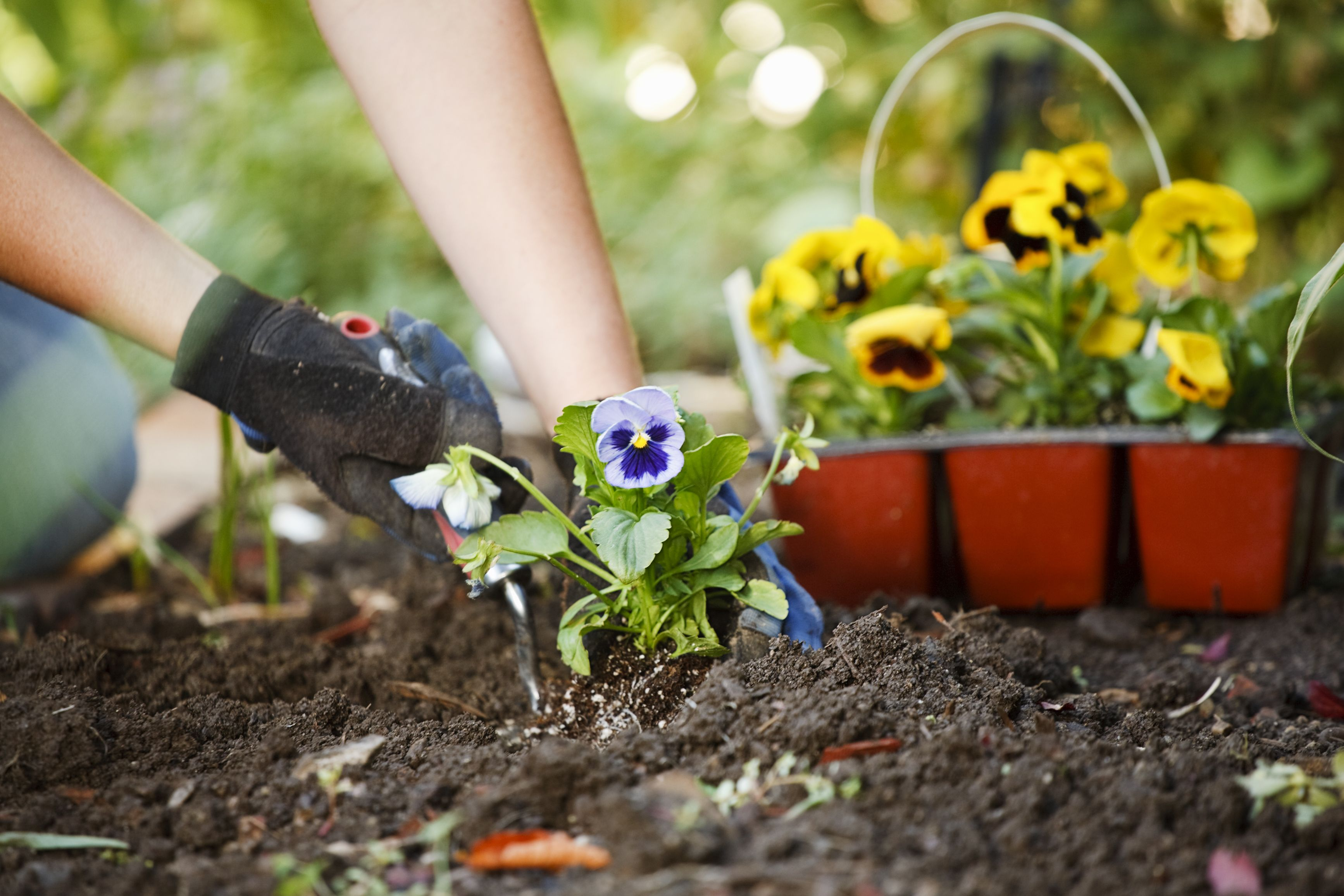 7 chemical-free homemade weed killers for your garden