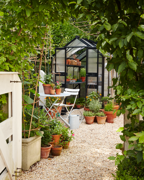 gidiere garden shed