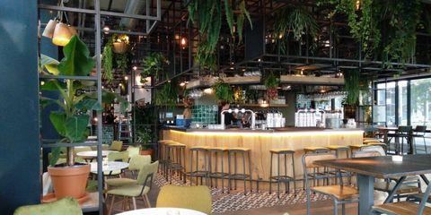 restaurants-rotterdam