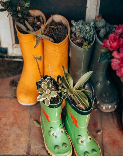 wellington boots used as plant pots