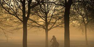 fiets, werk, woon-werk, verkeer, gezond, bewegen, overlijden, preventief, auto, trein