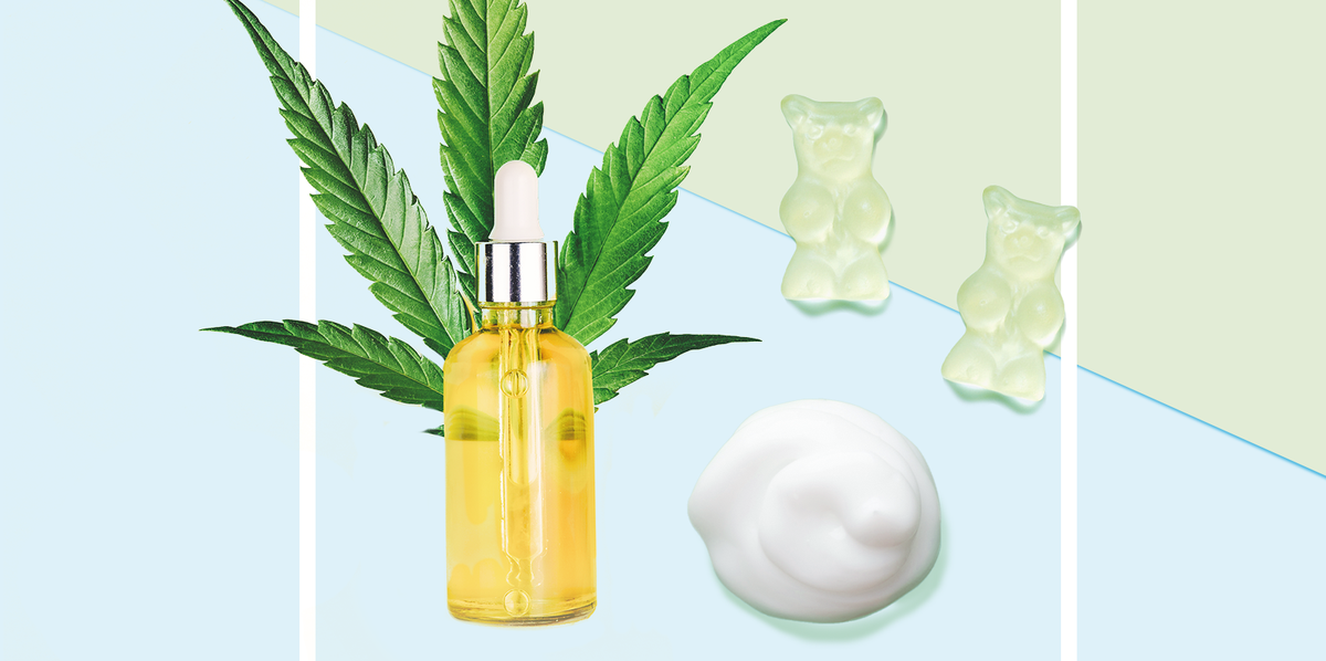 A Beginner's Guide to CBD: