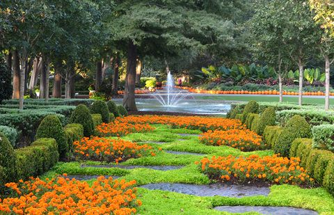 what to do in dallas dallas arboretum and botanical gardens in fall