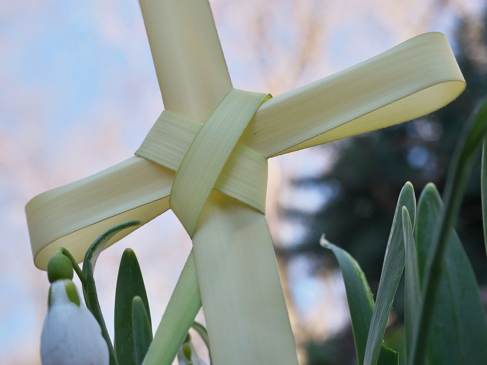 When Is Palm Sunday in 2020? Everything You Need to Know About the Christian Holiday