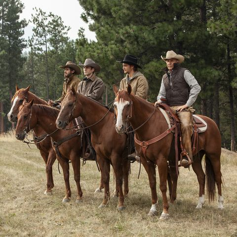 Where Is 'Yellowstone' Filmed? The Fascinating Story Behind the Real-Life Ranch