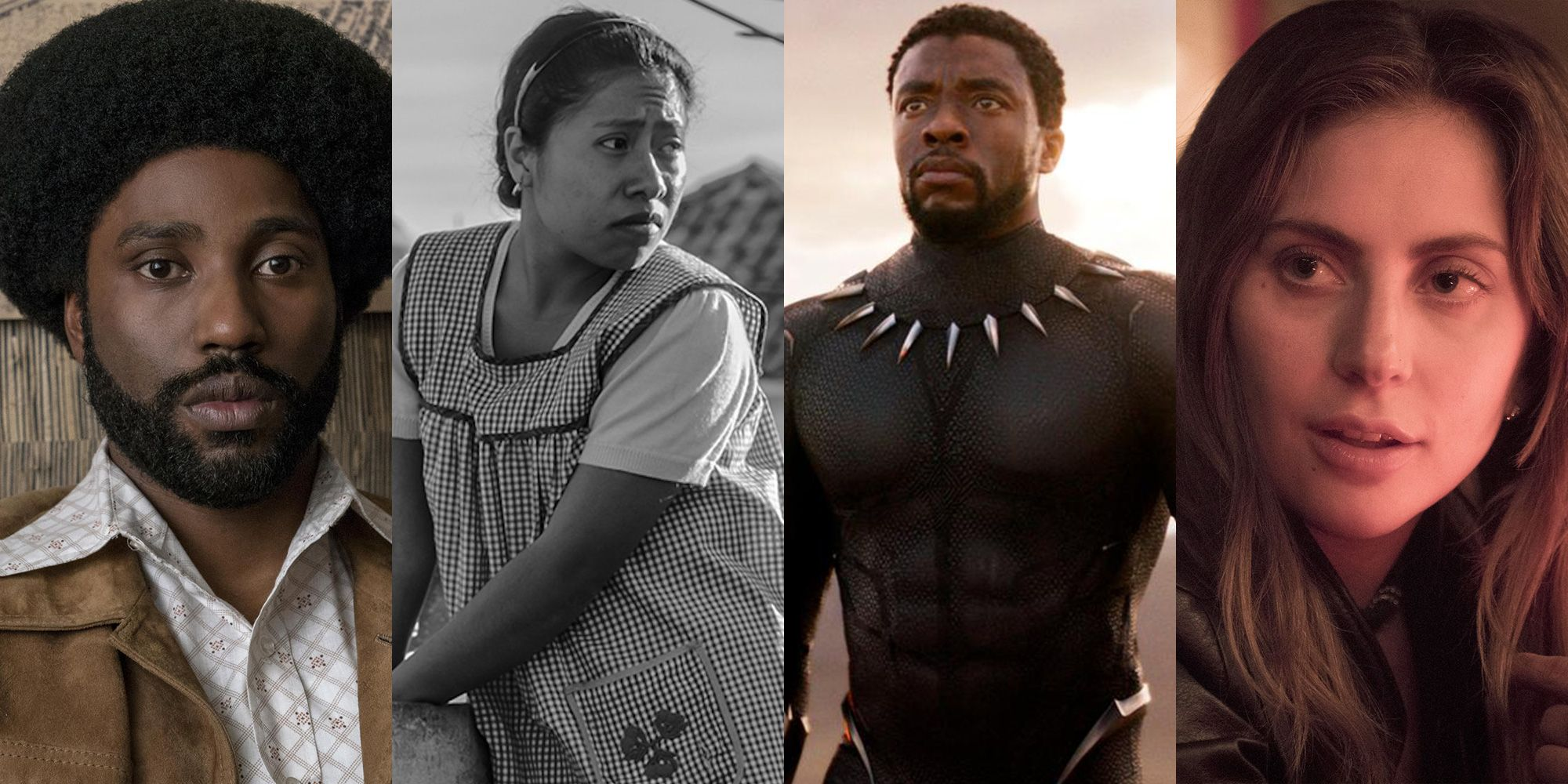 How to Watch Every Oscar 2019 Nominated Movie from Black Panther to Roma