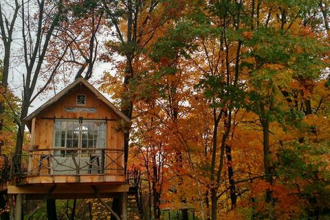 25 Amazing Treehouses You Can Rent In 2019 Best Tree House Vacations