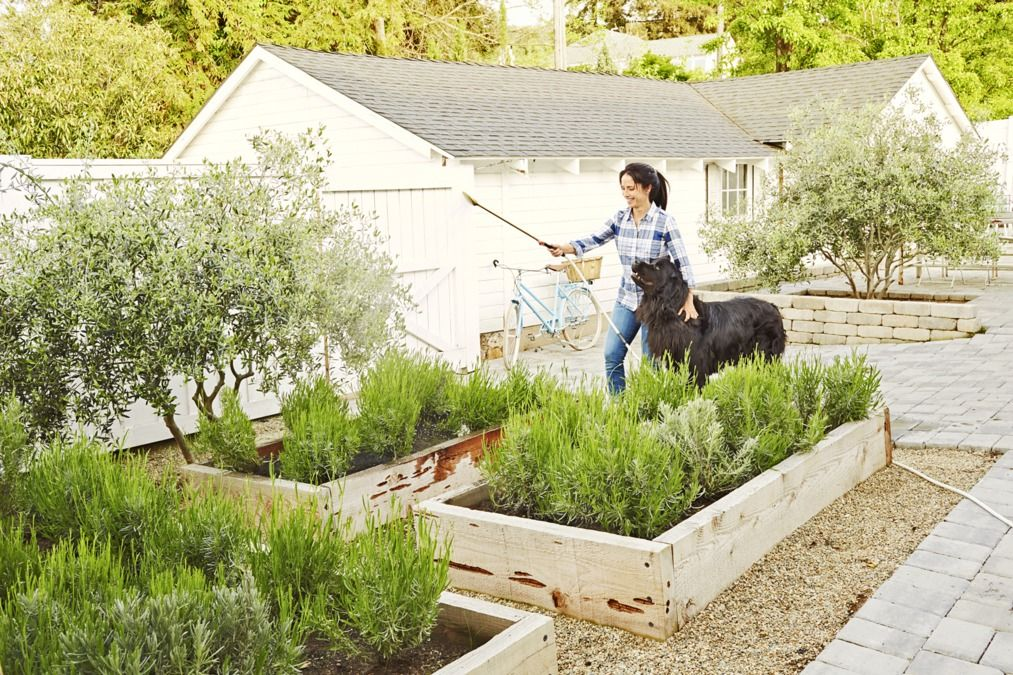 Backyard Gardening Ideas Country Living Magazine