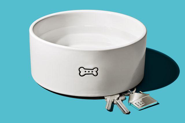 dog bowl with house keys hidden underneath