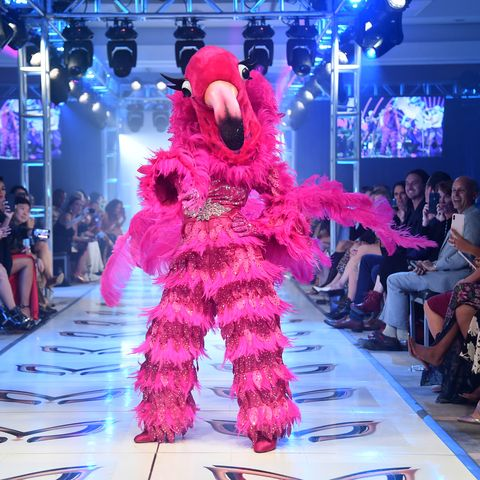 Who Is the Flamingo on 'The Masked Singer'?