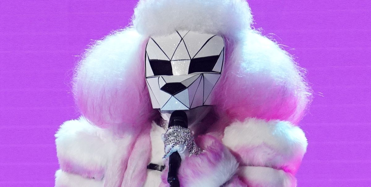Who Is The Poodle On The Masked Singer The Poodle Masked Singer Spoilers Clues And Guesses