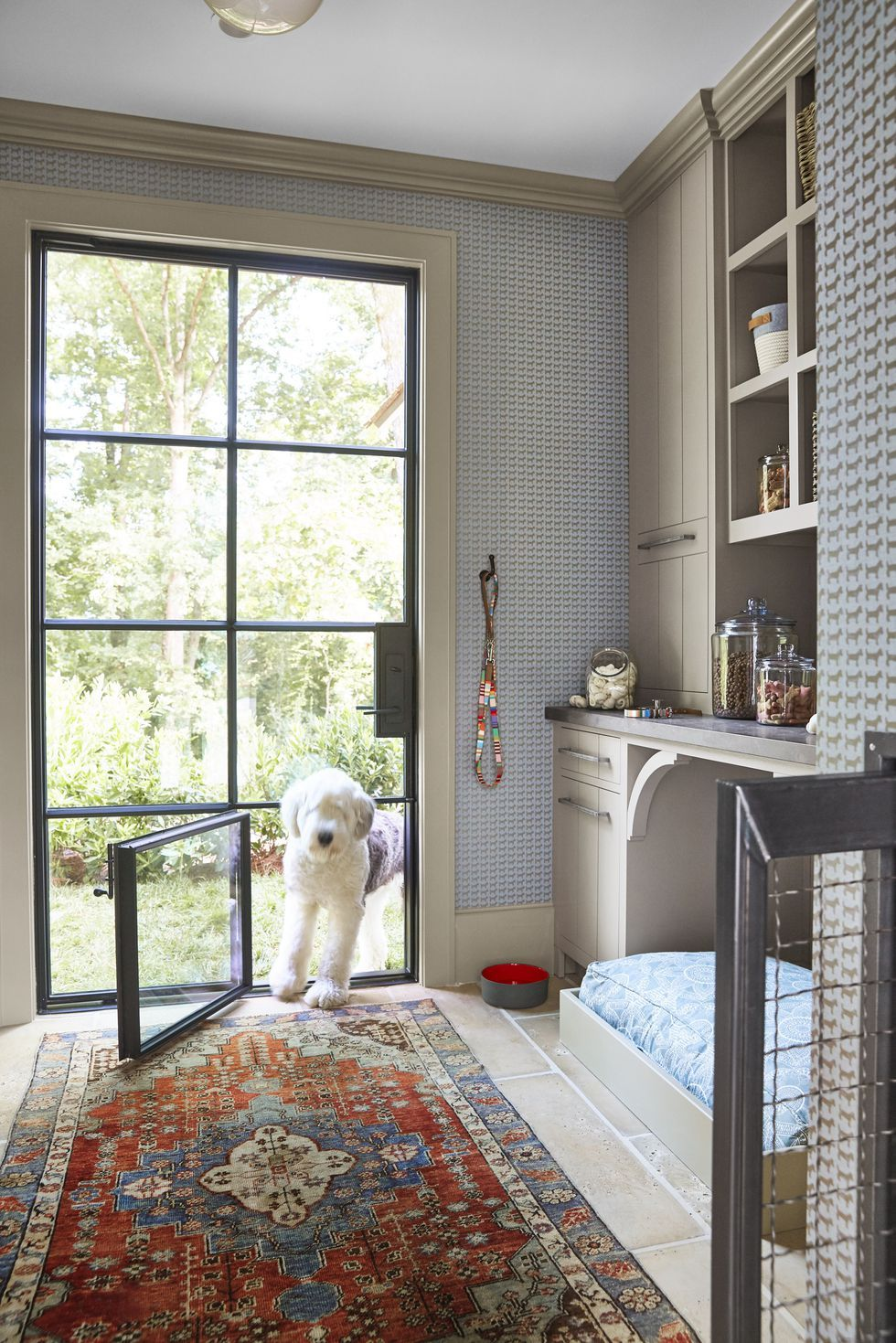 Dream Home Needs A Doggy Room
