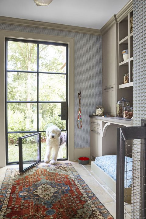 Every Pet Parent S Dream Home Needs A Doggy Room House Beautiful