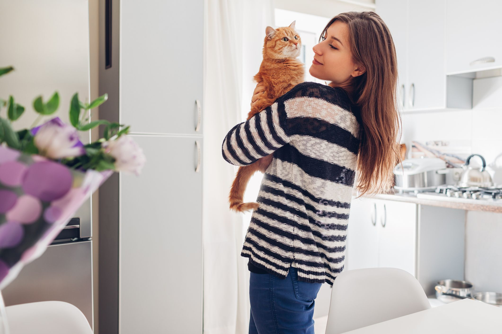 20 Reasons Why Cats Make the Best Pets - Facts About Cats