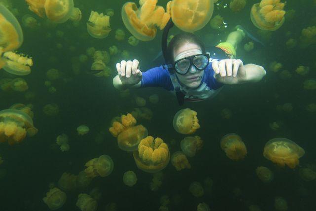 mujer buceando entre medusas