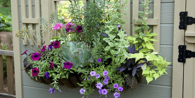 20 Planter Box Ideas To Inspire You, What To Put In Outdoor Pots Besides Flowers