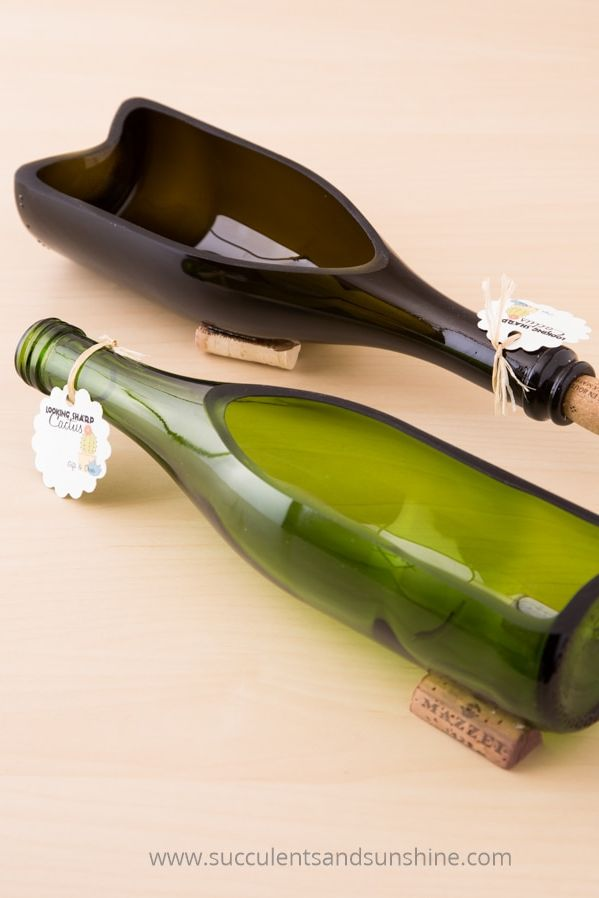 wine bottle crafts succulent