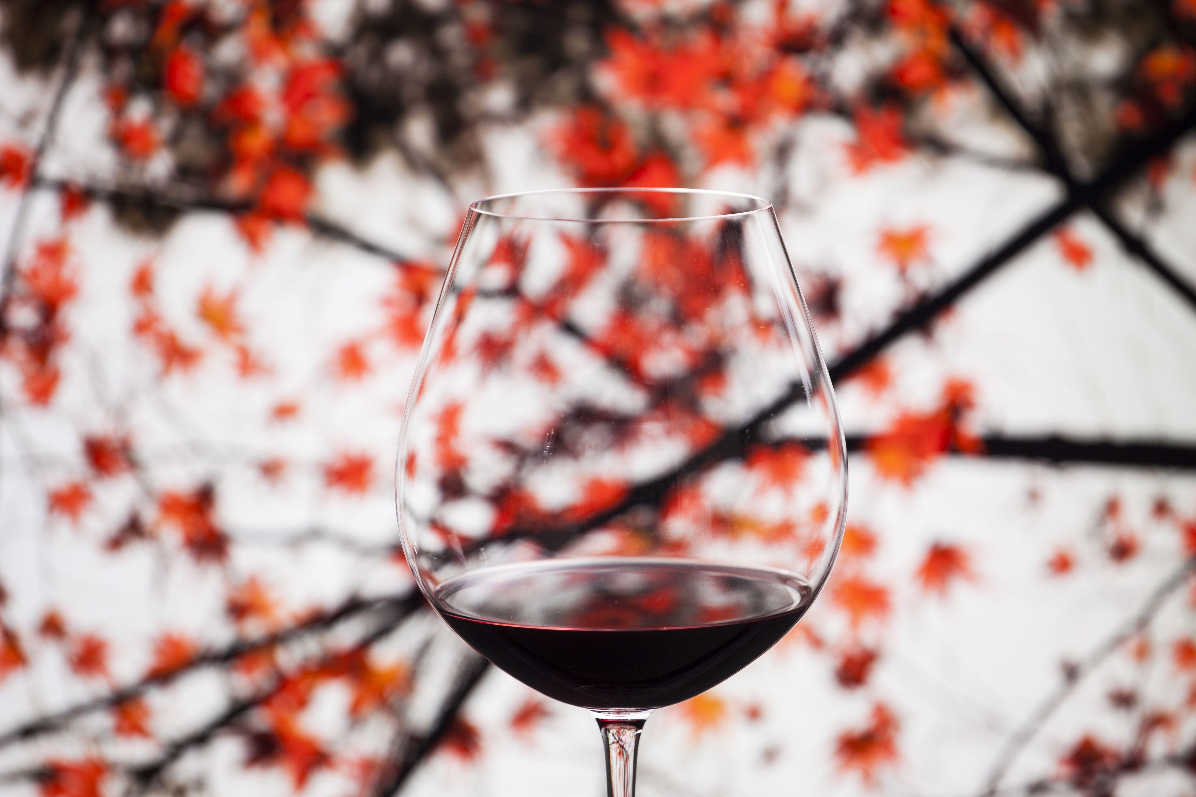 housebeautiful.com - Danielle Tullo - Fall Chore and Wine Pairings