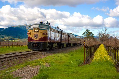 Sky, Transport, Track, Plant, Railway, Rolling stock, Cloud, Locomotive, Train, Plain,