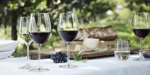 Foodpairing winepairing doordrinkwijnen
