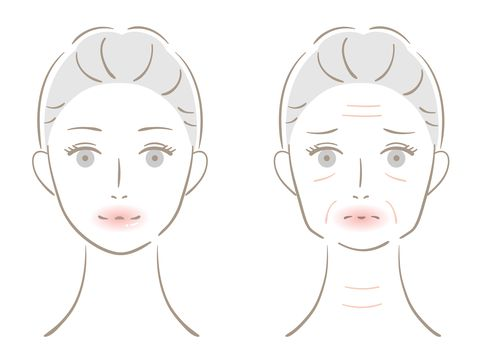 winkle and young woman face before after illustration beauty skin care concept