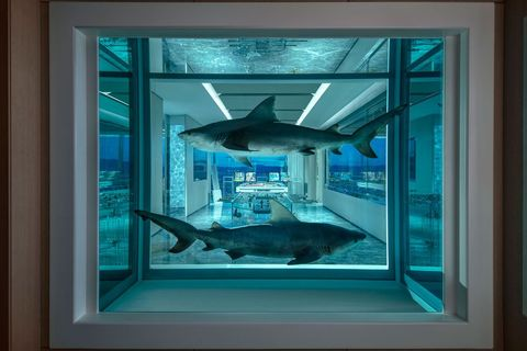 Blue, Turquoise, Window, Room, Glass, Interior design, Aquarium, Painting, Fish, Fish,