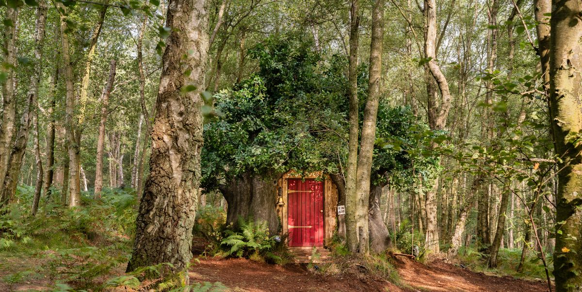 You can now rent Winnie the Pooh's house in the original Hundred Acre Wood via Airbnb