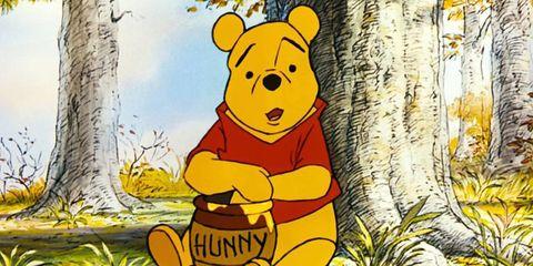 il verowinnie the pooh era unafemmina