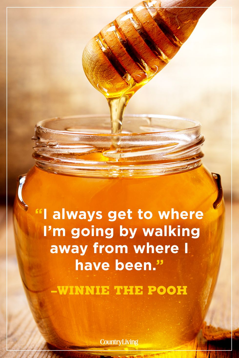 best winnie the pooh quotes