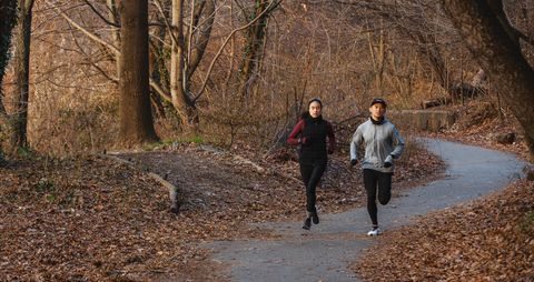 People in nature, Natural landscape, Tree, Walking, Autumn, Trail, Leaf, Winter, Woodland, Forest,
