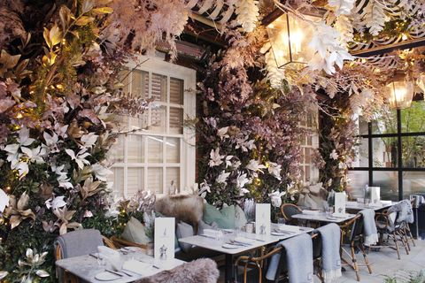 Branch, Restaurant, Table, Tree, Room, Building, Spring, Flower, Plant, Furniture,