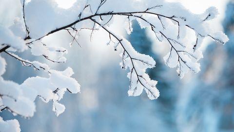 waarom is sneeuw wit