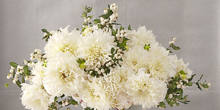 15 best winter flower arrangements gorgeous winter flowers plants winter floral arrangements mightylinksfo