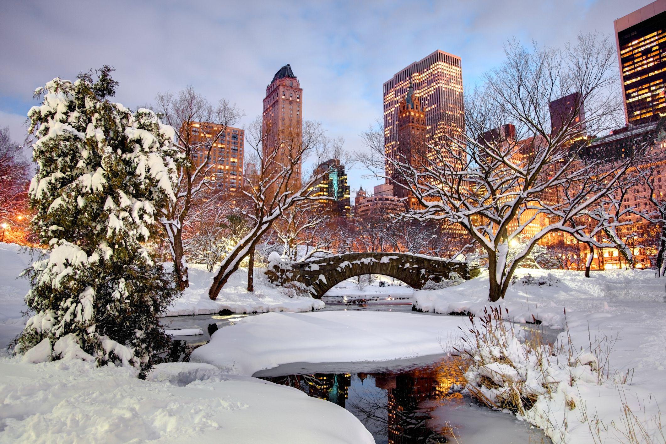 зима в централния парк, Ню Йорк