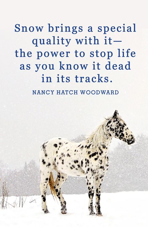 winter snow quotes nancy hatch woodward