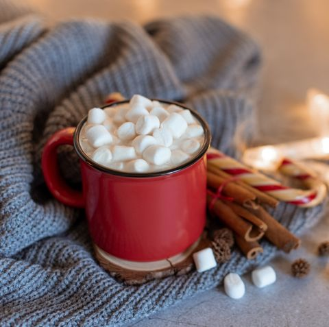 winter whipped cream hot coffee in a red mug with star shaped cookies and warm scarf   rural still life