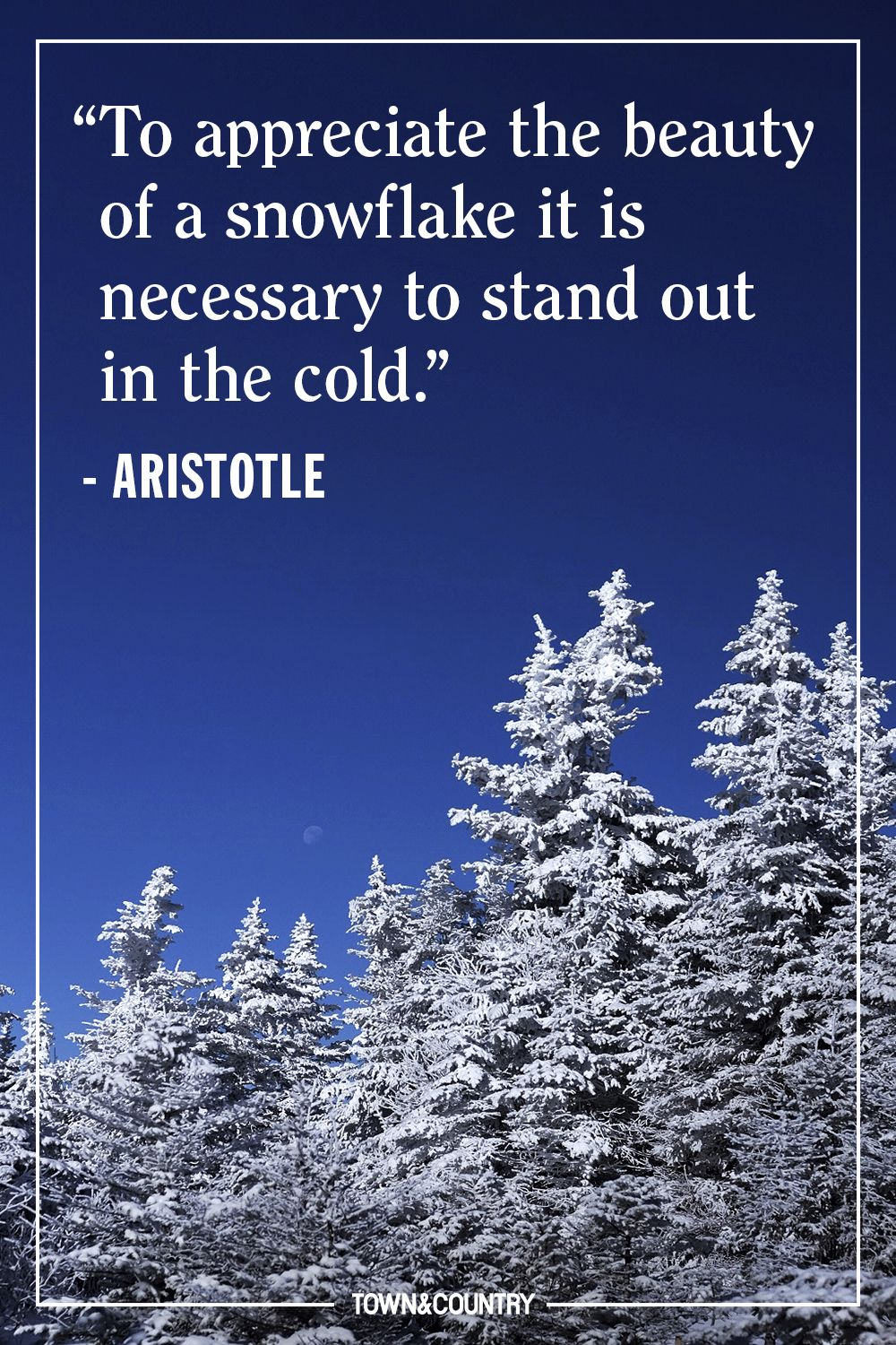 22 Best Winter Quotes   Cute Sayings About Snow & The Winter Season