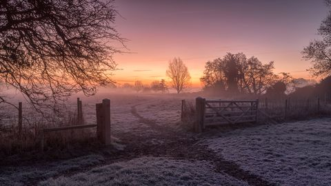 dedham, colchester, uk december 16, 2017image shows a violet and purple hinted image of a very cold, winter scene the frost is still covering the ground but we see the sun trying hard to bring warmth to a cold, frosty morning our attention is drawn to the track that leads through an open gate between two fields, the track snakes through the frost, towards the rising sun we see in the sky and into the the mist all around are trees with no foliage, despite the obvious cold nature of the image there is a warmth to the scene cast by the orange and purple hues