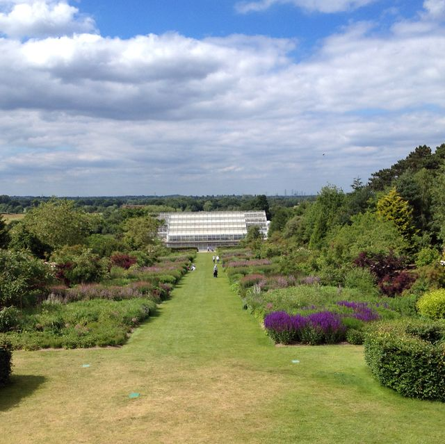 rhs wisley park and greenhouse, england