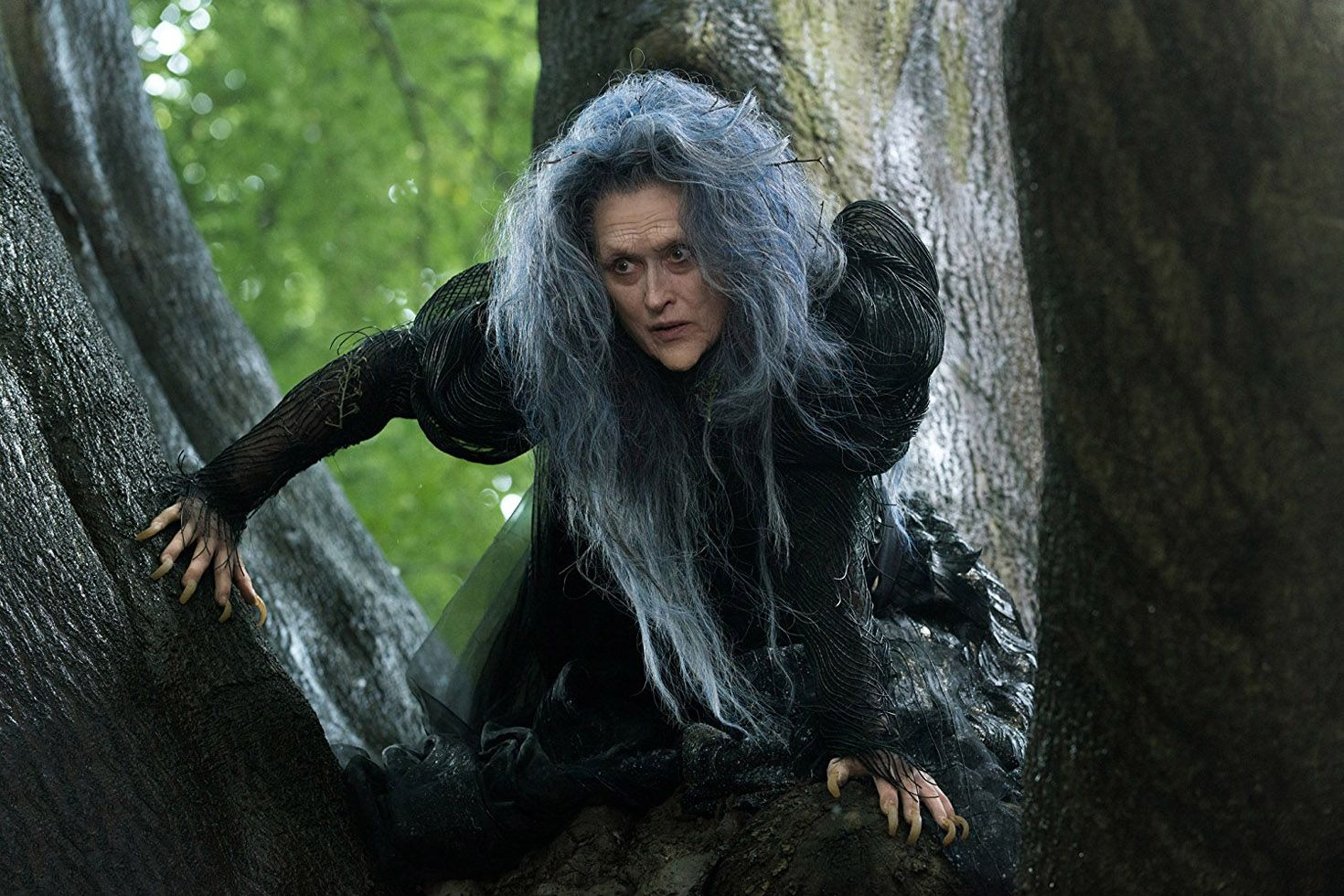 witch movies into the woods