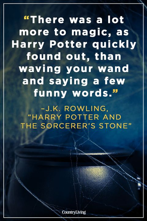 witch quotes harry potter and the sorcerer's stone