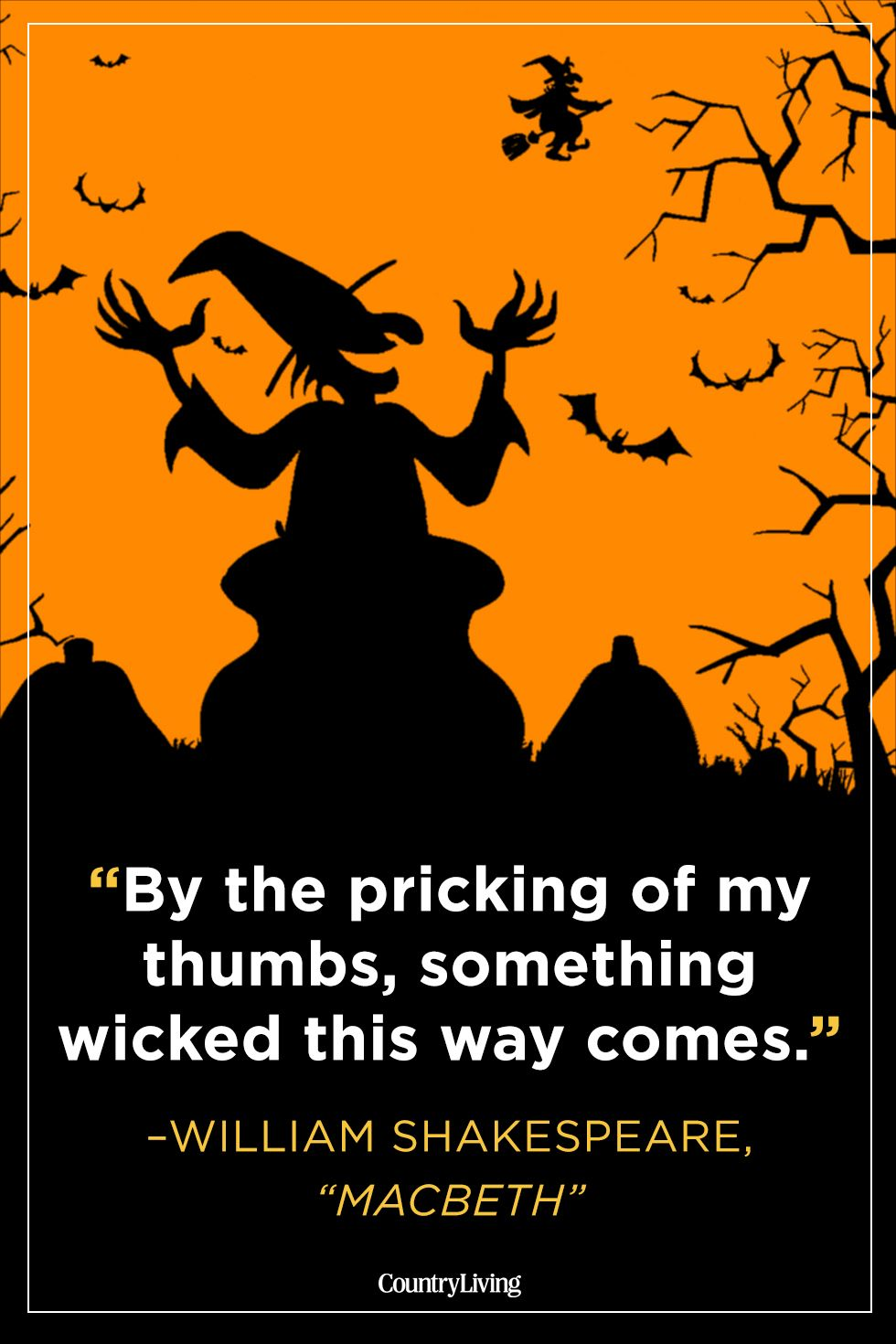 25 Witch Quotes Quotes And Sayings About Witches