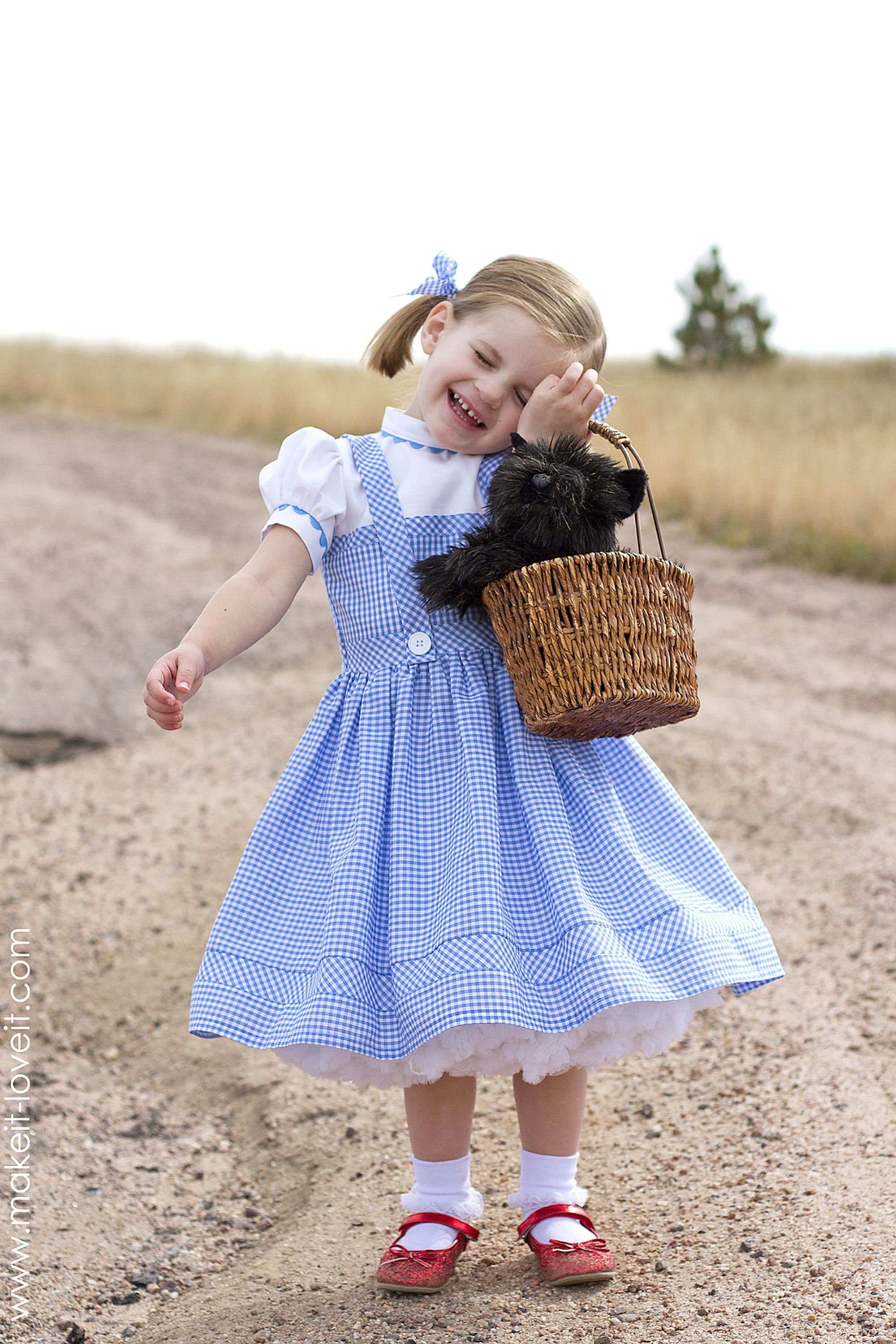 wizard of oz costumes dorothy diy