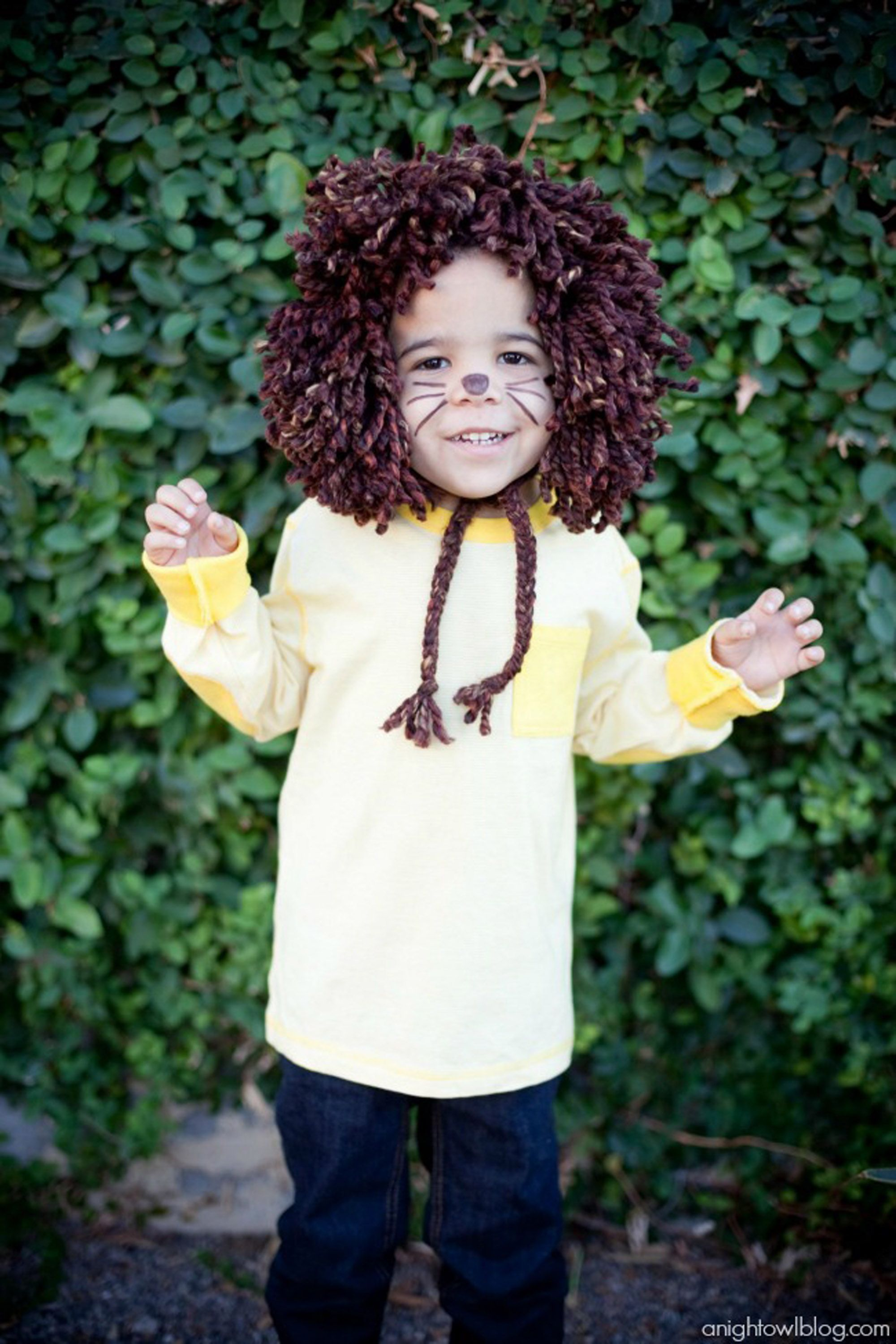 wizard of oz costumes lion