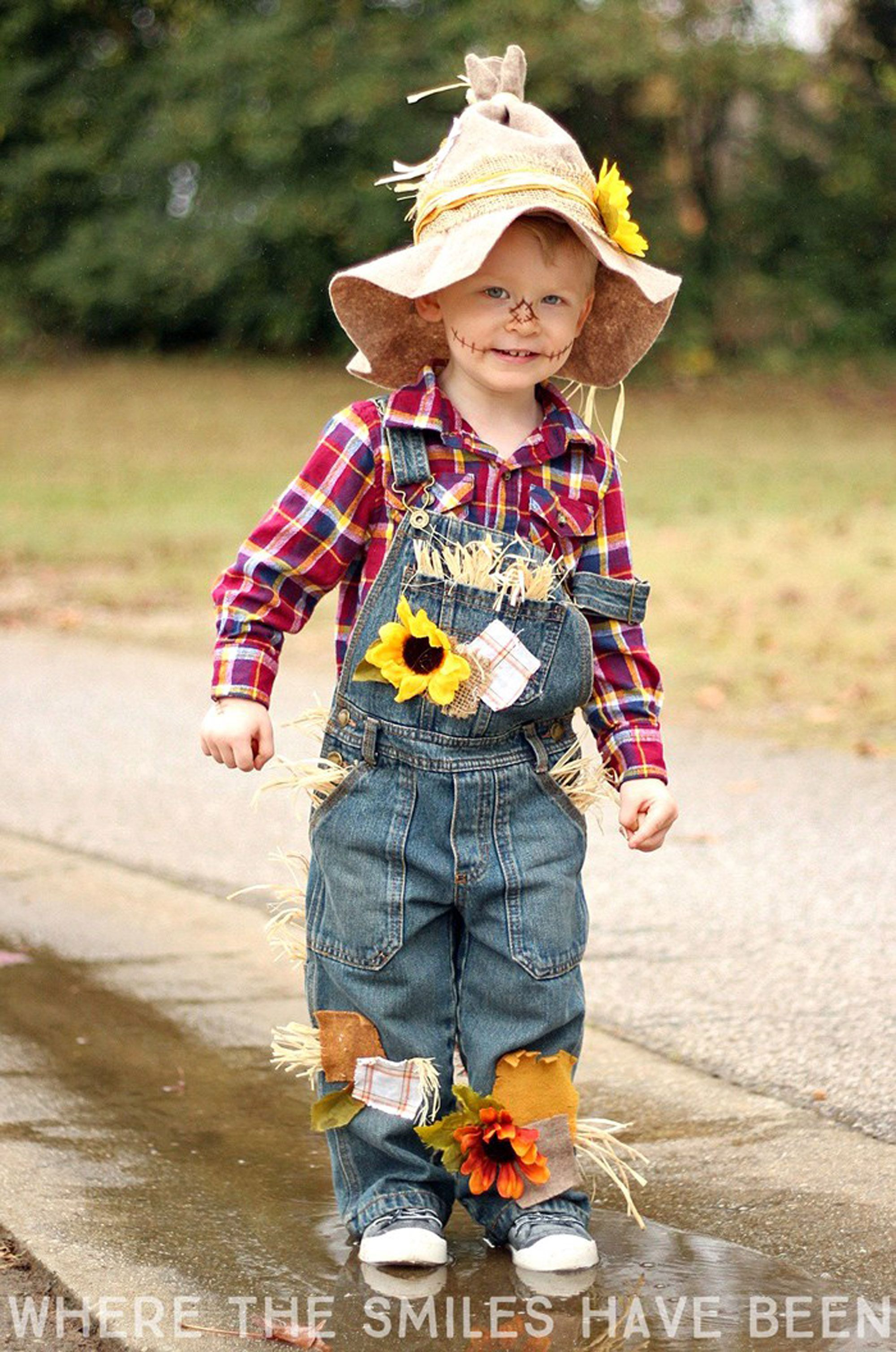 27 Diy Wizard Of Oz Halloween Costumes For Dorothy Scarecrow And