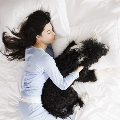 woman and her dog in bed