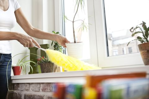 consejos limpiar polvo